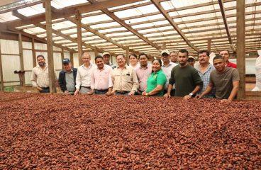 Asociatividad clave para el desarrollo del sector cacaotero